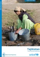 Tajikistan - Food Security Monitoring, 2017