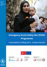 Turkey - Emergency Social Safety Net Programme, Vulnerability Profiling 2018: Analysis Results