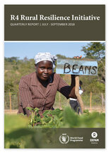 R4 Rural Resilience Initiative Quarterly Report July- September 2018