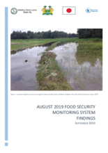 Food Security Monitoring System Findings