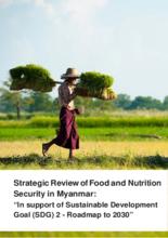 2018 - Myanmar Country Strategic Review