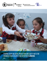 Scoping Study on Social Protection and Safety Nets for Enhanced Food Security and Nutrition in Armenia