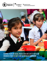Scoping Study on Social Protection and Safety Nets for Enhanced Food Security and Nutrition in Tajikistan