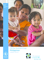 2018 - Fill the Nutrient Gap - Philippines Summary Report