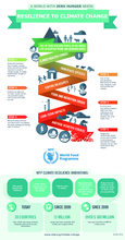 2018 - WFP and Climate Change Infographic