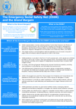 2018 - Turkey - The Emergency Social Safety Net (ESSN) and the Grand Bargain