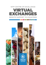 Virtual Exchanges - Remote Support to Countries
