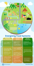 Energizing Food Systems – Infographic