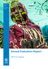 Annual Evaluation Report 2019