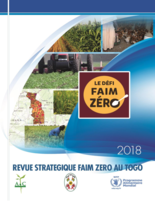 Togo Strategic Review