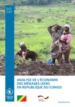 Analyse de l'économie des ménages en Republique du Congo