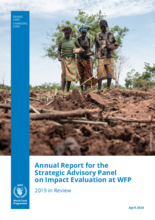 Annual Report for the Strategic Advisory Panel on Impact Evaluation at WFP