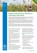 Impact Evaluation for Resilience Learning in the Sahel: Brief
