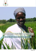 2018 - Burkina Faso Country Strategic Review